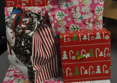 Jillian-Carroll---Holiday-Giving-1